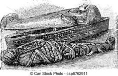 Egyptian mummy and sarcophagus (british museum), vintage engraving. Egyptian mummy and sarcophagus (british museum), vintage engraved illustration. Lice Removal, Egyptian Mummies, Vector Art, Eps Vector, Vector Stock, Art Icon, Free Illustrations, British Museum, Line Art