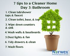 Day 3 - 7 tips to a cleaner home: Bathroom  Try the Norwex microfiber products for dusting and cleaning in the bathroom.  Clean the tub/shower, taps and facet. Clean the toilet using the Norwex Sanira system as well as the toilet top and base. Wipe down the counters and sink. Wash the walls and baseboards. Dust lights and fan with the Norwex Dust Mitt. Tidy drawers and wipe down interiors. Wash the floors.