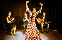 Flamenco Shows in Barcelona | FlamencoTickets.com - has info for shows all around Spain for the future!