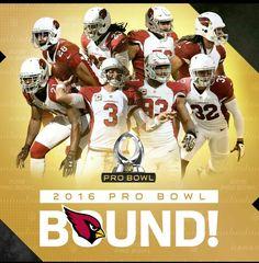 2016 ProBowl Arizona Cardinals #BirdGang #AZLadyBirds