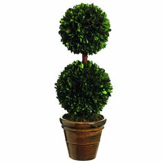 Silk Decor Preserved Boxwood Double Ball Topiary, 18.5-Inch, Green ** You can find more details by visiting the image link.