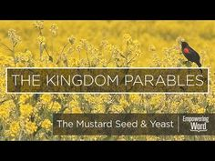 """On this episode, Pastor Ken teaches """"The Parables of the Mustard Seed and the Yeast"""" found in Matthew the series, """"Kingdom Parables"""". Mustard Seed, Jesus Christ, Religion, Blessed, Father, Bible, Study, Youtube, Pastor"""