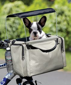 Take a look at the Beige Pet Bicycle Basket on #zulily today!