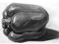 Still Life Sketch, Still Life Drawing, Cool Art Drawings, Drawing Sketches, Nature Sketches Pencil, Fish Sketch, Deviantart Drawings, Geometric Shapes Art, Observational Drawing