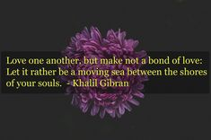 46 Best Quotes Images On Pinterest