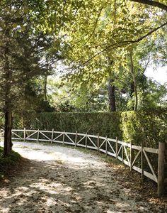 machado-silvetti-cape-cod-studio-garden-matthew-williams-dsc-7522