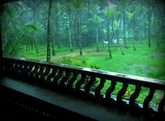 38 New Ideas Wall Paper Green Nature Tropical Beautiful Landscape Photography, Beautiful Landscapes, Kerala Travel, Rain Wallpapers, Smell Of Rain, Kerala Houses, Rain Photography, Green Nature, South India