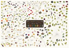 The Various Varieties of Vegetables / Pop Chart Lab