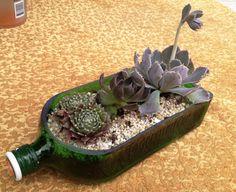 Jagermeister Bottle Garden  Succulent Planter Kit by BottleRehab, $35.95