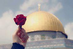 القدس..فلسطين image
