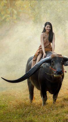 jokes on a budget dslr photography tutorials pdf in Wild Animals Photography, Indian Photography, Art Photography, Photography Lighting, Jewelry Photography, Animals Beautiful, Cute Animals, Foto Picture, Cutest Animals