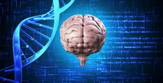 ft-study-identifies-2-new-genes-responsible-for-alzheimers-disease-among-african-americans-neuroinnovations