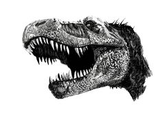 #dibujo de #dinosaurio   #dinosaur #trex #tiranosaurusrex