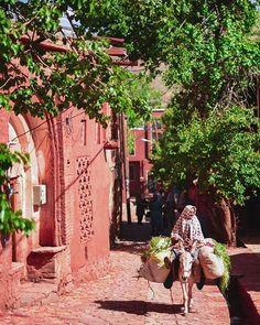 "Beautiful capture of rural woman at historic Abyaneh village . . Abyaneh is historical and unique village from Sasanid era ""1500 years ago"" . Lication: Natanz county - #IRAN . ==================  #tourism_iran . . Photo by: @alirezakhatibiii . تصویری بسیار زیبا از کوچه های سرسبز ابیانه و زندگی ساده پیرزن روستایی  پ ن۱: این عکس حس خیلیییی قشنگی داره  پ ن٢: ❤ این روستا که پیشینه اون به دوره ساسانیان برمیگرده واقعا یکی از منحصر بفرد ترین روستاهای ایرانه . @a.r.j92 ادمین"