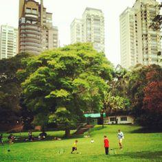 rafagushi:  ☔ ••• DOMINGO NO PARQUE (5) Vasto gramado no Burle Marx propicia picnics e brincadeiras em família ••• Foto por @ronaldosfc Use ...