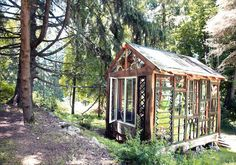 The stained Glass cabin of... Neile Cooper