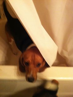 Can't I have some privacy?
