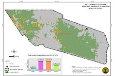 As massive deforestation continues in Sumatra's Tesso Nilo, Indonesian lawmakers pin blame on 'foreign' NGOs  Read more at http://news.mongabay.com/2013/0326-dparker-tesso-nilo.html#AcaRy5PXsHwu9fvB.99