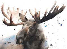 Life is just better with animals around! Light up your room and spirit with this original watercolor Canadian moose painting. This is the original painting, painted in watercolor paint on watercolor paper. I hope you enjoy her as much as I enjoyed painting it! *PRINTS of this original