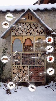 DIY Insektenhotel: Eine einfache Schritt-für-Schritt-Anleitung - The Handy Mano #gartenupcycling Outdoor Pallet Bar, Bug Hotel, Mason Bees, Bird Boxes, Garden Projects, Garden Inspiration, Step Guide, House Insects, Allotment