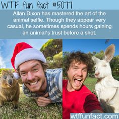 WTF fun fact # 5077 Allan Dixon has mastered the art of the animal selfie.  Though they appear very casual, he sometimes spends hours gaining an animal's trust before a shot. WTF Facts : funny, interesting & weird facts