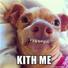 Phteven Dog -  Kith me