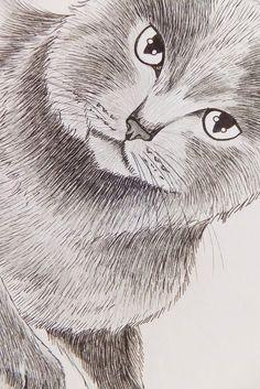 Mijn tekeningen, voornamelijk katten hebben gemiddeld een ontwikkelingsproces van 5 uur ( A4 formaat). Het begint allemaal met een potloodschets op papier.      Als de schets klaar is, tr