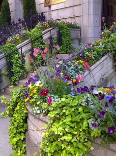 Summer in New York, brownstone entrance ~ Through the French eye of design: