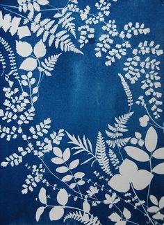 Cyanotypie - Cyanotype - Anna Maria Bellmann Textiles, Textile Prints, Art And Illustration, Botanical Illustration, Photo Projects, Art Projects, Shibori, Cute Lockscreens, Sun Prints