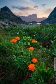 Russia, Krasnoyarsky Krai, National Park Ergaki, Gornyh Duhov stream