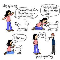 DOG vs PEOPLE GREETING!!! That's also how I greet my cats after a long time with out. They don't like that too much.