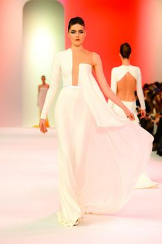 pamela rolland s/s 2014 | ines corbet 5 weeks ago stephane rolland couture s s 2014