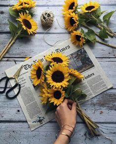 Sunflowers. Summer bouquet.