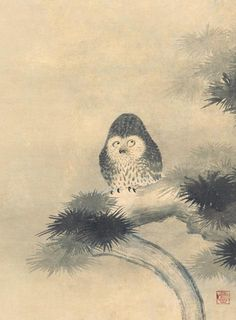 狩野山雪 - 松梟竹鶏図:この表情はヤバいぞ。解ってる人なんだな狩野山雪多分。