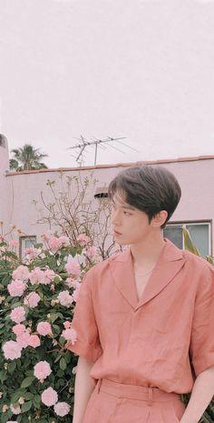Smile Wallpaper, Nct Doyoung, Doja Cat, Kpop, Pink Aesthetic, True Beauty, Boyfriend Material, K Idols, Jaehyun