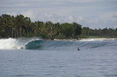 bbbeeeauuuudiful #Macaronis #Wave #Mentawai #Islands