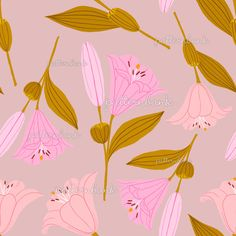 Rash Guard Women, Pink Lily, Paper Background, Surface Pattern, Repeat, Floral Design, Royalty, Apps, Patterns