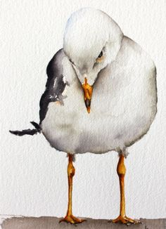 watercolor bird painting bird art original watercolor Seagull by Betty Moore by bMoorearts on Etsy Watercolor Animals, Watercolor And Ink, Watercolour Painting, Painting & Drawing, Watercolor Trees, Watercolor Artists, Watercolor Portraits, Watercolours, Bird Drawings