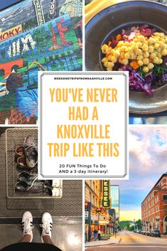 Red pandas and jellyfish: You've never had a Knoxville trip like this — Those Crazy Nelsons Tennessee Vacation, Nashville Tennessee, East Tennessee, Salt Lake City, Weekend Trips, Day Trips, Alaska Travel, Alaska Cruise, All I Ever Wanted