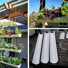 Simple spouting planters. Like  #Mitre10DIY #DIYDNA #Mitre10NZ #Gardening #Inspiration #Outdoors