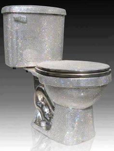 Wow a bedazzled toilet lol first time i seen something like that