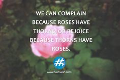 We can complain because roses have thorns, or rejoice because thorns have roses. #StayPositive #WorkHard #Hashvash  www.hashvash.com Staying Positive, Work Hard, Roses, Inspirational Quotes, Canning, Life Coach Quotes, Pink, Rose, Inspiring Quotes