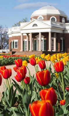 Tour the Historic Home of President Thomas Jefferson Dc Travel, Places To Travel, Travel Destinations, Travel Tips, Places To Go, Historic Architecture, Art And Architecture, Amazing Pictures, Pretty Pictures