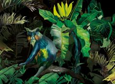 Illustartion set for a clubhouse based in Warsaw. Jungle Love, Warsaw, Pattern Art, Animal Pictures, Behance, Illustration, Animals, Painting, Color