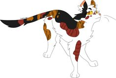 Sorreltail by ukariwarriorcats on tumblr