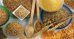 Os benefícios dos grãos na reeducação alimentar!!!  :)