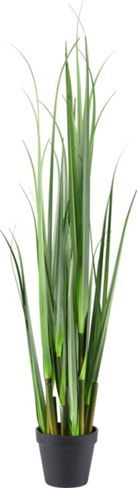 Pflanze aus Kunststoff – Ein immergrüner Gruß ohne Durst