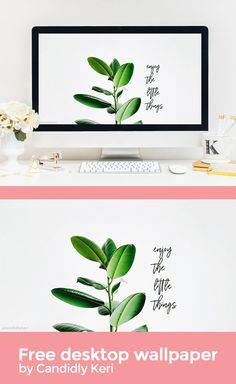Enjoy the little things, greenry green leaves quote inspirational wallpaper you can download for free on the blog! For any device; mobile, desktop, iphone, android!