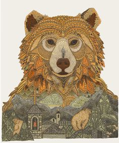Illustrations by Claire Scully