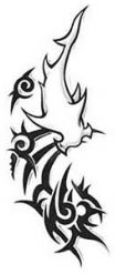 Tribal Shark Tattoo   Rusty Ryan